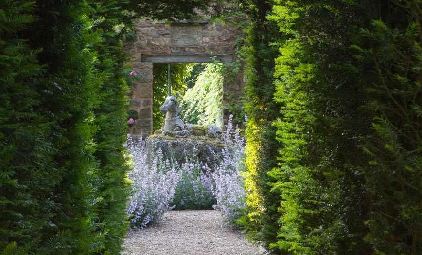 Cothay Manor Gardens - HM Blog