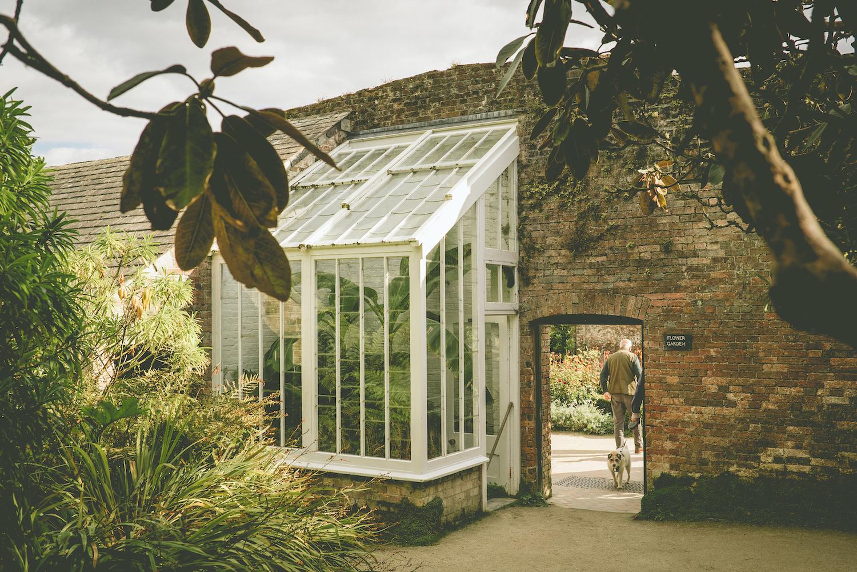 Lost gardens of Heligan - Cornwall - Walled garden - Humphrey Munson Blog