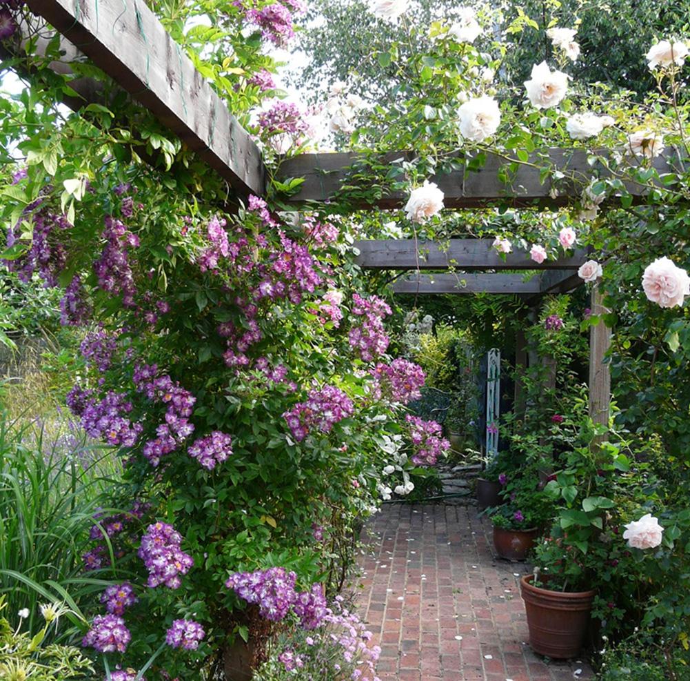 Ten Inspiring Garden Design Ideas: Five Inspiring Garden Designs